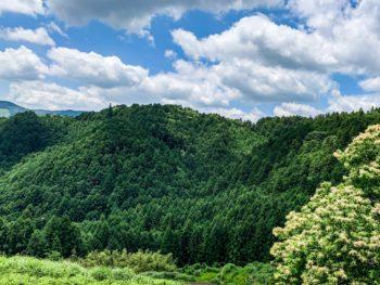 Les montagnes de Tenryū, Préfecture de Shizuoka