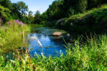 Dans la vallée du Guillec, Sibiril, Bretagne (Crédits photo : Bruno Valibouse)