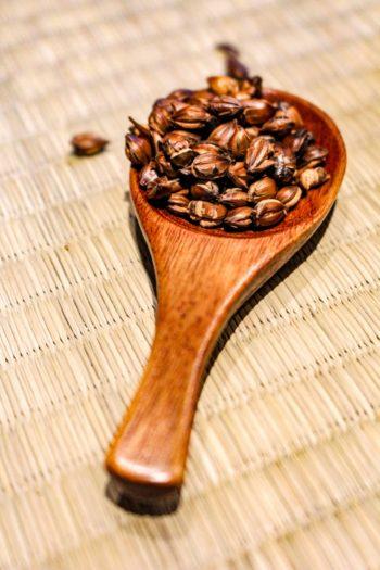 Graine de breuvage du Japon - Mugicha - Détail graines sèches