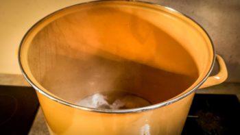 Bain de vapeurs de miel des ruchers du Léon, Moulin de Kérouzéré, Sibiril, Finistère Nord, Bretagne (Capture d'écran issue de la série de Documentaires Curiousitea : Thés D'Europe)