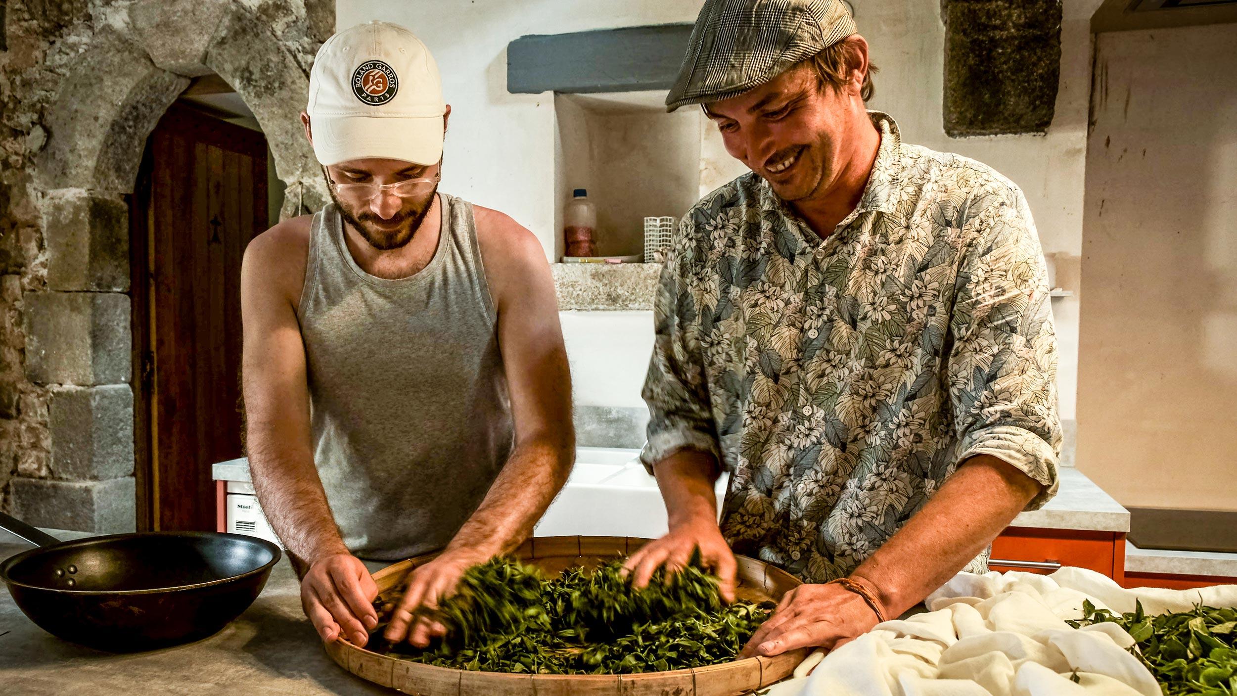 Roulage manuel du thé de France avec Benjamin Sieuw & Émile Auté, Moulin de Kérouzéré, Sibiril, Bretagne