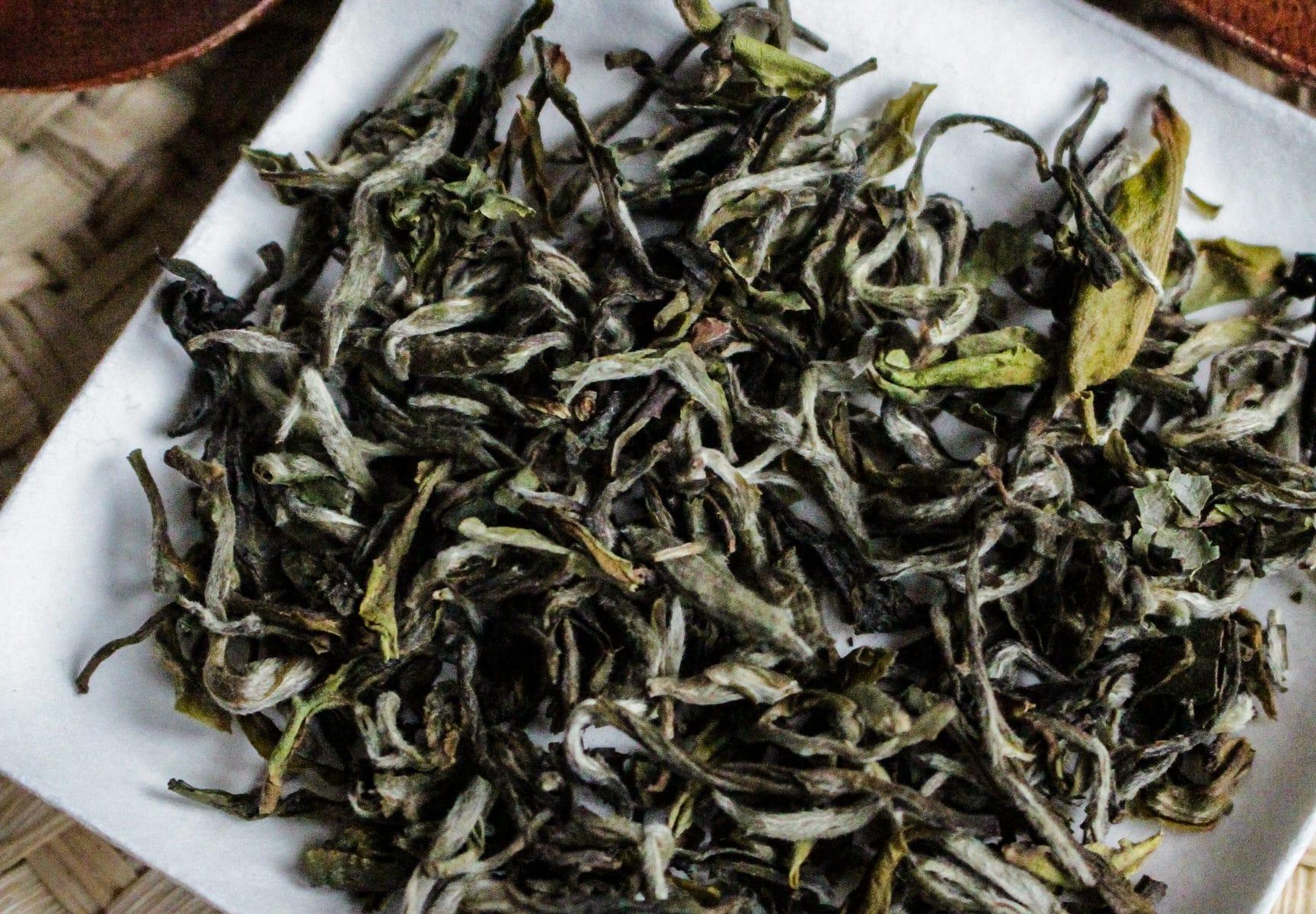 Thé Blanc d'Inde - Montagnes Argentées - District de Darjeeling