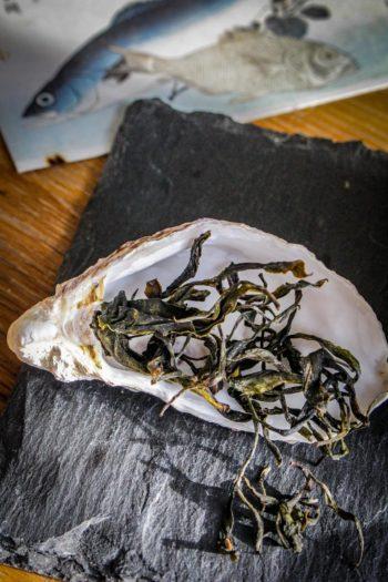 Thé Blanc de France 「Jeune Bretagne - Feuilles sèches - Vue zénitale