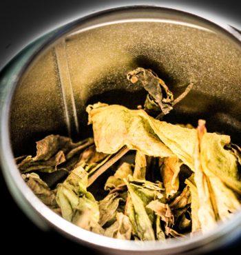Thé Oolong de France 「Vapeurs de Lait」- Détail feuilles sèches