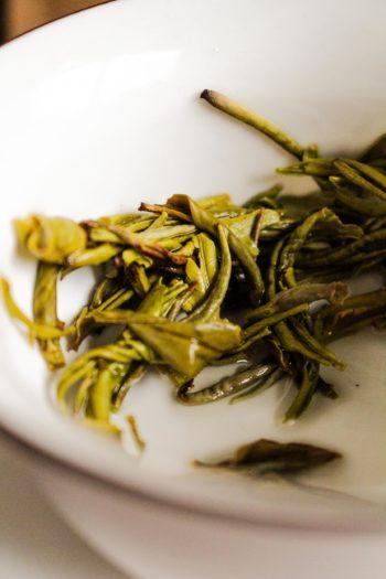 Thé Jaune de Chine - Or Jaune - Détail feuilles infusées