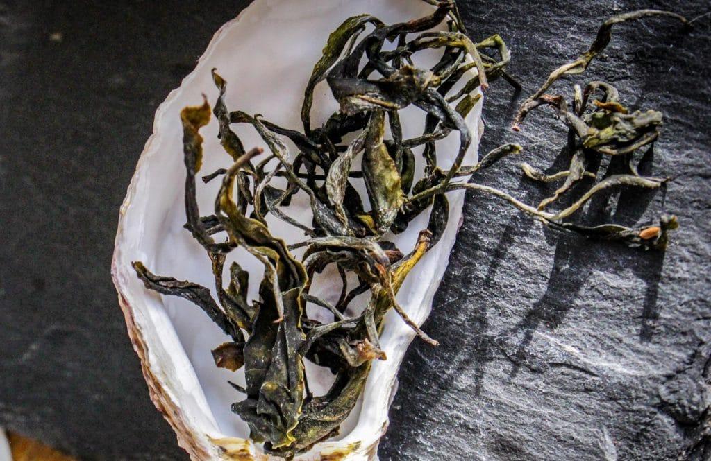 Thé Blanc de France「Jeune Bretagne」