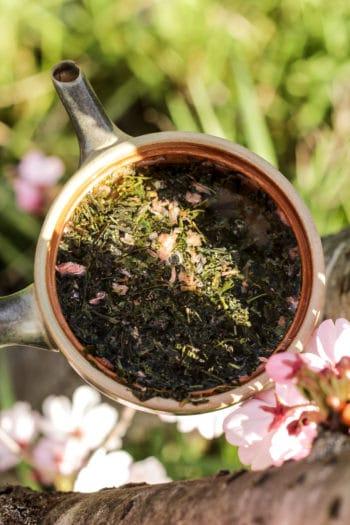 Sencha & Fleurs de Cerisier du Japon 「Brise Fleurie」