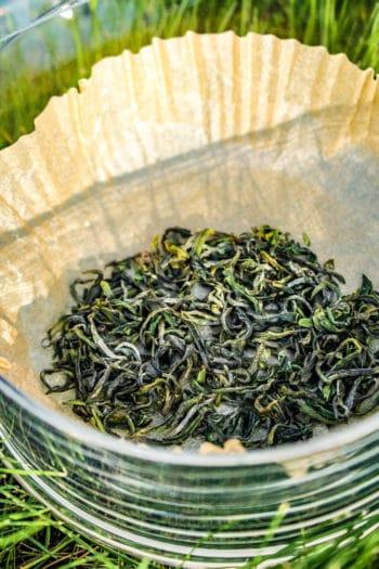 Thé Vert 'Organic' Sejak de Corée du Sud 「Verdure Ensoleillée」