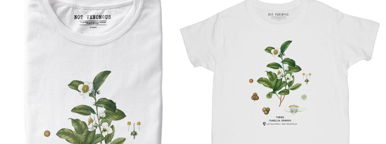 Curiousitea x Not Venomous Collaboration - Camellia Sinensis